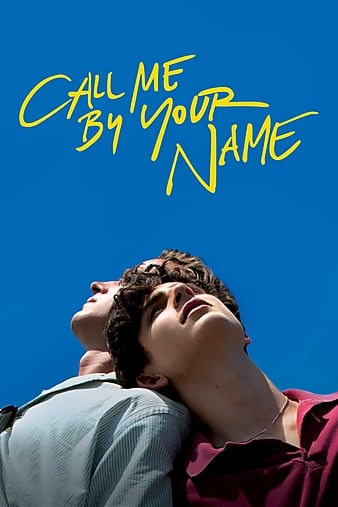 Call Me By Your Name 2017 1080p WEB-DL DD5 1 H264-FGT