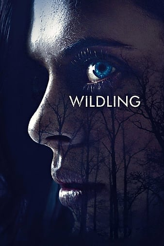 Wildling.2018.1080p.BluRay.REMUX.AVC.DTS-HD.MA.5.1-FGT