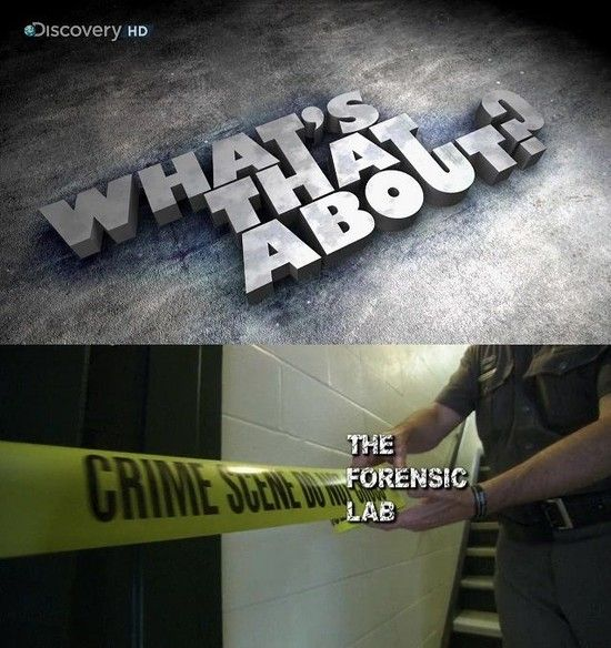 Dc Whats That About The Forensic Lab 720p Hdtv X264 Ac3 Mvgroup Forum Mkv Torrent Download